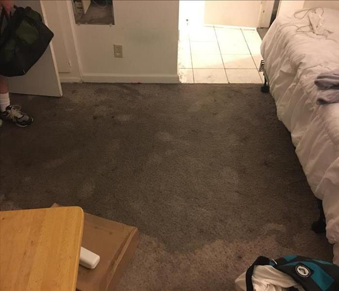 Storm causes carpet damage in Encino, CA