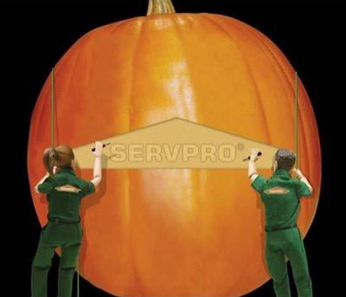 Mold Remediation Preserve your Jack O' Lantern from growing Mold