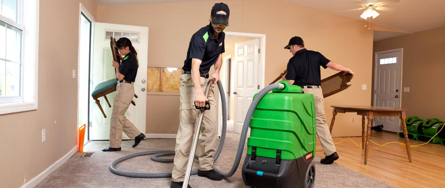 La Canada, CA cleaning services